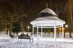 斯诺伊冬天在黄昏的公园 免版税库存图片