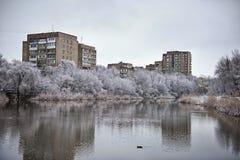 斯诺伊冬天城市池塘在一多云天 库存照片