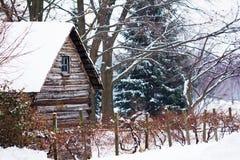 斯诺伊冬天小河 库存图片