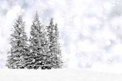 斯诺伊冬天横向 免版税库存照片