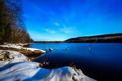 斯诺伊冬天湖在纽约 免版税库存图片