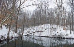 斯诺伊冬天湖边 库存图片
