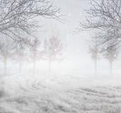 斯诺伊冬天背景 免版税库存照片