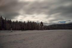 斯诺伊冬天领域和森林 免版税库存照片