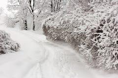 斯诺伊冬日 库存图片
