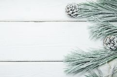 斯诺伊分支圣诞树和锥体在白色木葡萄酒背景 图库摄影