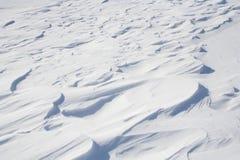 斯诺伊原野 免版税库存图片
