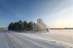 斯诺伊和冰冷,空的乡下冬天路在日落 免版税库存图片