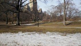 斯诺伊土地在纽约 免版税库存图片