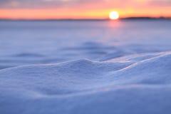 斯诺伊圣诞节场面 冬天在随风飘飞的雪的太阳亮光 图库摄影