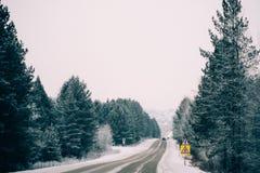斯诺伊在冻森林中的冬天路在雨夹雪以后 冷气候,暴风雪,坏可见性 莫斯科地区 免版税库存照片