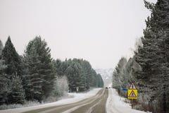 斯诺伊在冻森林中的冬天路在雨夹雪以后 冷气候,暴风雪,坏可见性 莫斯科地区 库存照片