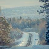 斯诺伊在冻森林中的冬天路在雨夹雪以后 冷气候, 库存图片