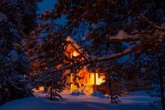 斯诺伊在被点燃的森林村庄背景的杉木分支  免版税库存图片