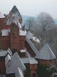 斯诺伊屋顶在法国 库存图片