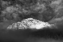 斯诺伊山和树 免版税库存照片
