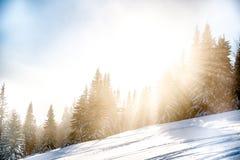 斯诺伊山在与后照光的冬天 库存图片
