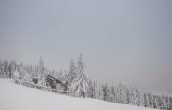 斯诺伊村庄在冬天在黑森林里 库存照片