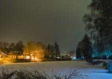 斯诺伊池塘树 库存图片