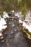 斯诺伊河小河在冬天 免版税库存照片