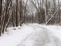 斯诺伊足迹通过森林 免版税图库摄影