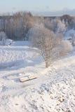 斯诺伊长凳在一个公园在冬天 库存照片