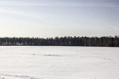 斯诺伊领域和天空 图库摄影