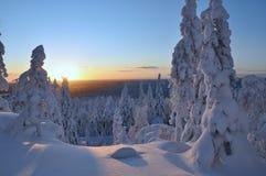 斯诺伊风景在北极 免版税库存照片