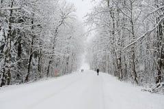 斯诺伊风景在昂热尔贝格 免版税库存照片