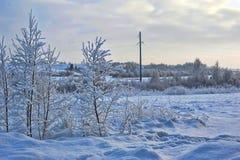 斯诺伊风景 免版税库存图片