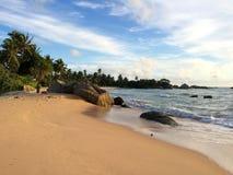 斯里兰卡与白色沙子、棕榈树和风景日落的天堂海滩 库存图片