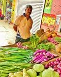 斯里兰卡海岛003 免版税库存照片