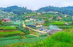 斯里兰卡的农业地区 图库摄影