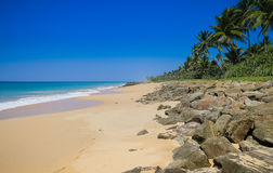 斯里兰卡的南海岸 免版税库存照片
