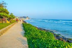 斯里兰卡的南部的海岸 库存图片
