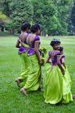 斯里兰卡的婚礼的女傧相 免版税库存照片