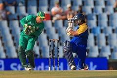 斯里兰卡的板球运动员Kumar Sangakkara 免版税库存照片