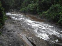 斯里兰卡的自然水秋天 库存照片