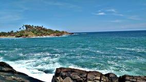斯里兰卡的自然美人 库存图片