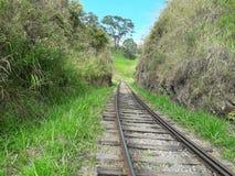 斯里兰卡的铁路秀丽  免版税库存图片