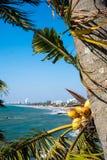斯里兰卡的首都沿海市Columbo 免版税图库摄影