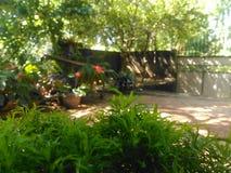 斯里兰卡美丽的家庭菜园 免版税库存照片