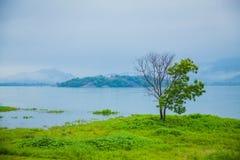 斯里兰卡自然 免版税库存照片