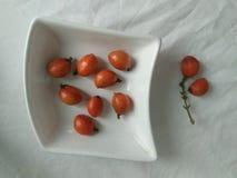斯里兰卡自然phototo甜美国橄榄  库存图片