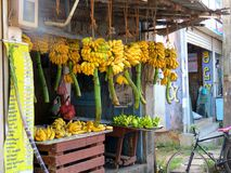 斯里兰卡香蕉商店 免版税库存图片