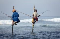 斯里兰卡,南海岸- 1月05日;2011年:传统斯里兰卡 免版税图库摄影
