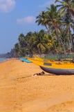 斯里兰卡, Wadduwa 免版税库存照片