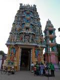 斯里兰卡015的环境 图库摄影