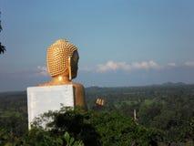 斯里兰卡rangiri dambulla tempel 库存照片