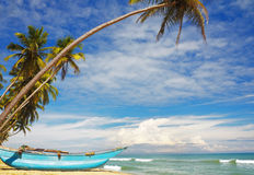 斯里南卡晴朗的海岸 库存照片